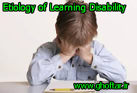 Etiology of Learning Disability