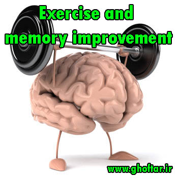 Exercise and memory improvement
