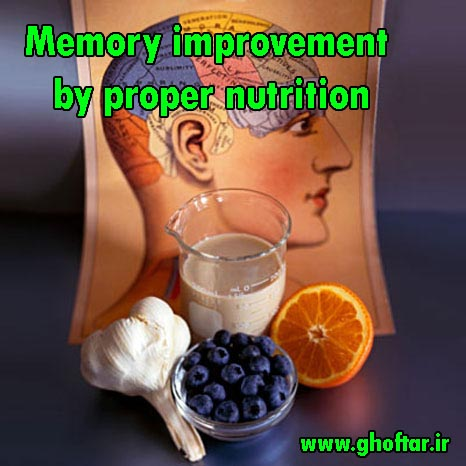 Memory improvement by proper nutrition