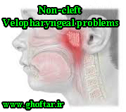 Non-cleft Velopharyngeal problems