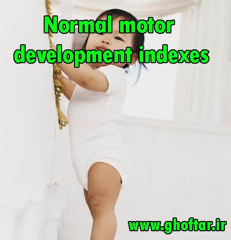 Normal motor development indexes