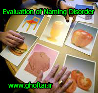 Evaluation of Naming Disorder